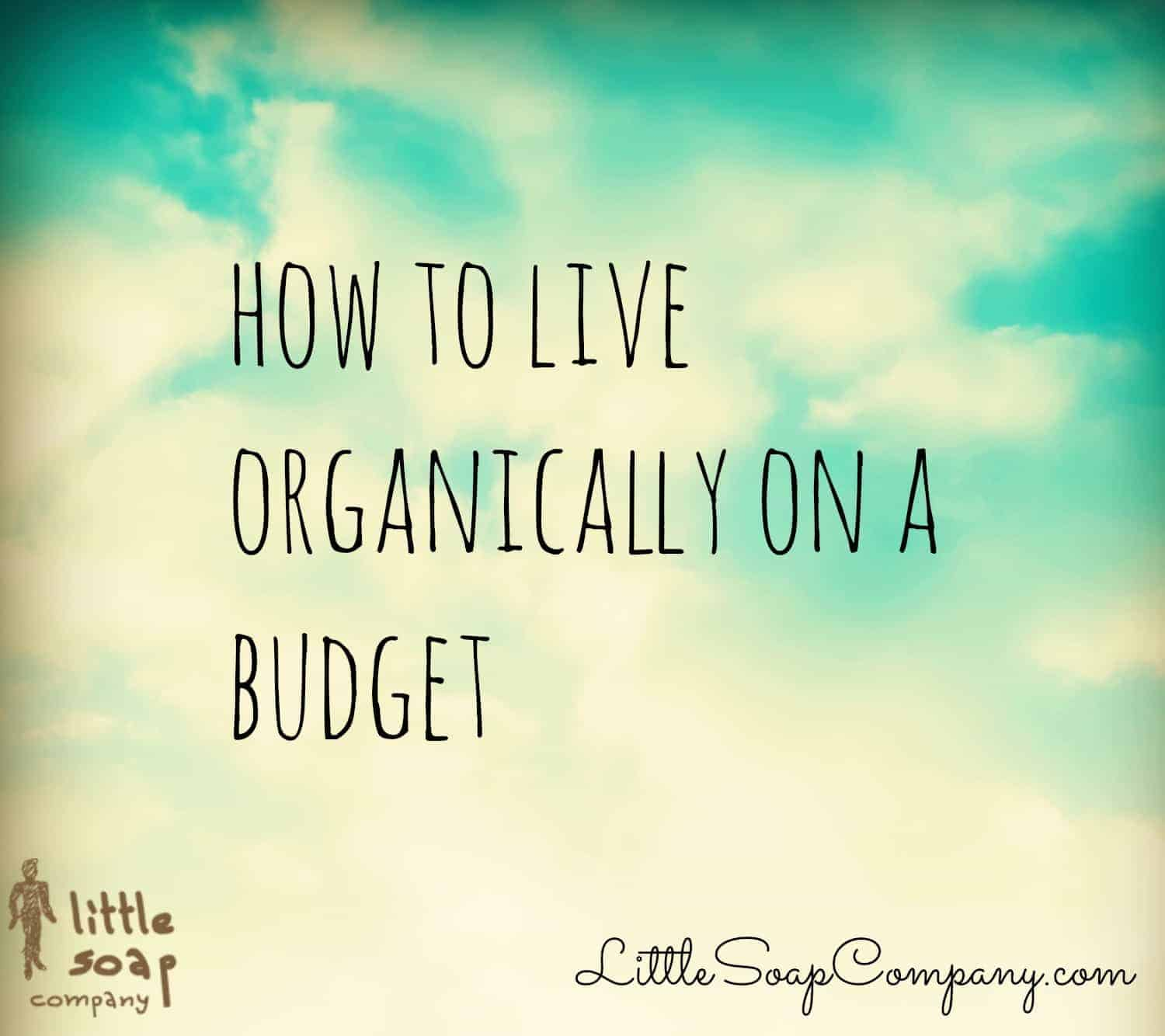 How to live organically on a budget~ LittleSoapCompany.com