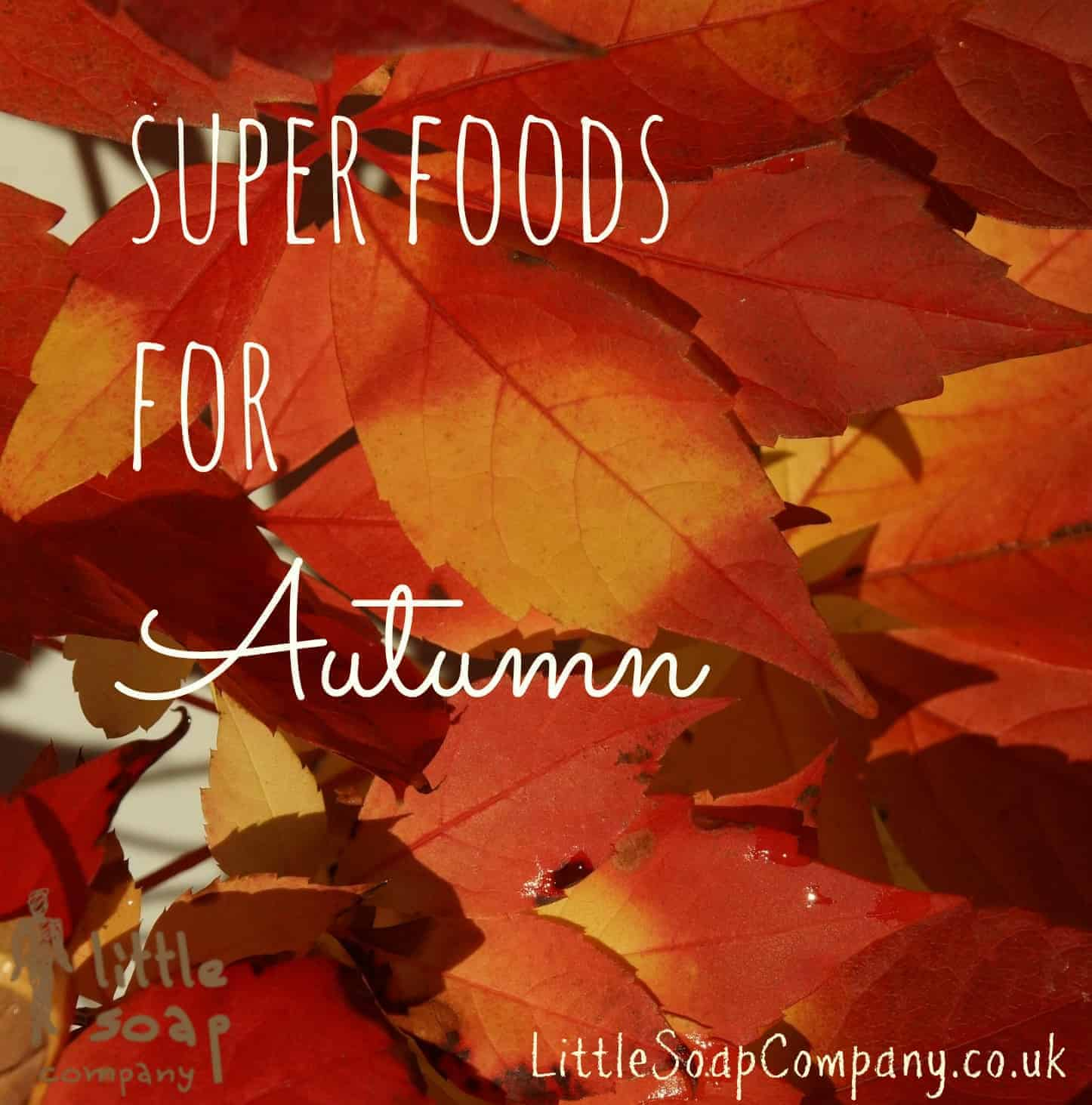 Super foods for autumn~ LittleSoapCompany.co.uk