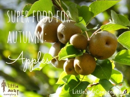 Super foods for autumn_apples~ LittleSoapCompany.co.uk