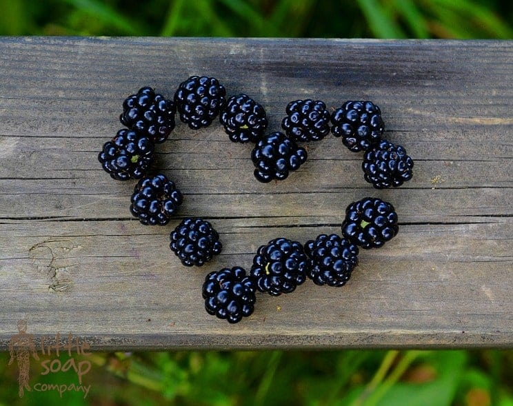 three little super foods to eat in september_LittleSoapCompany.co.uk