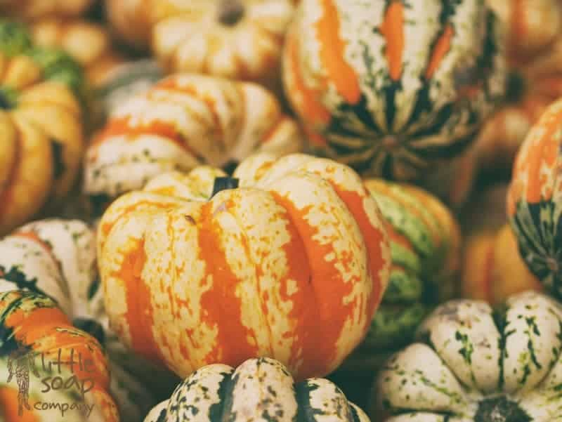 3 little uses for pumpkin_LittleSoapCompany.co.uk