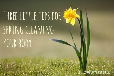 Three little tips for spring cleaning your body~ LittleSoapCompany.co.uk