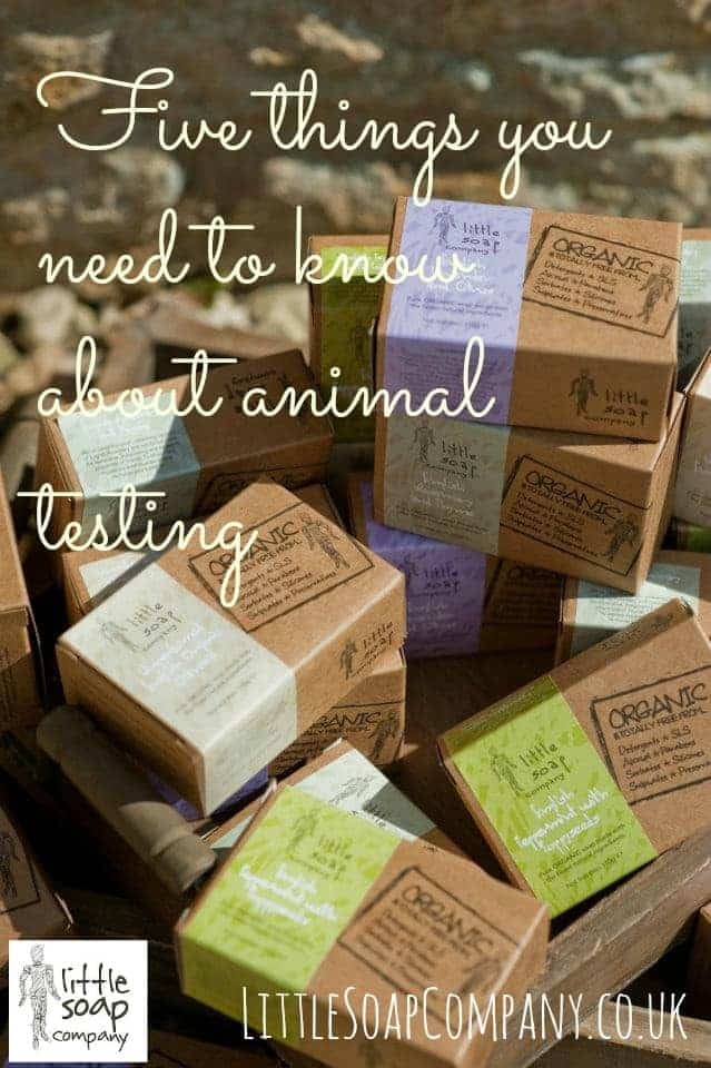 five things you need to know about animal testing~ LittleSoapCompany.co.uk