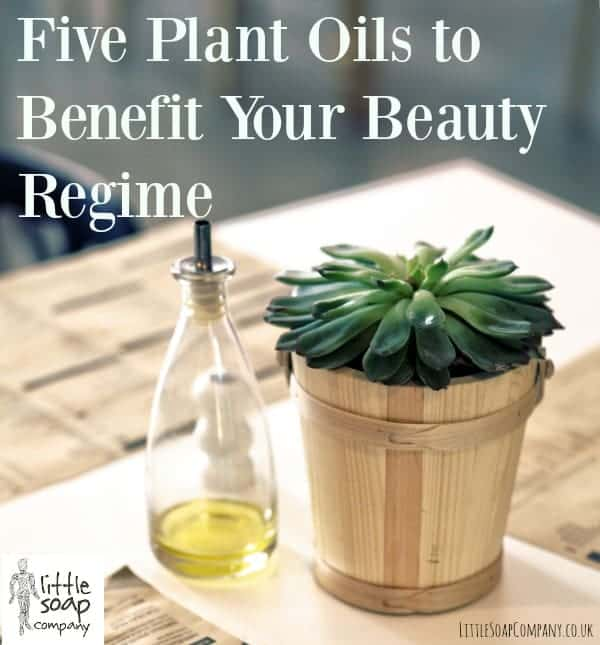 Five Plant Oils to Benefit Your Beauty Regime_LittleSoapCompany.co.uk