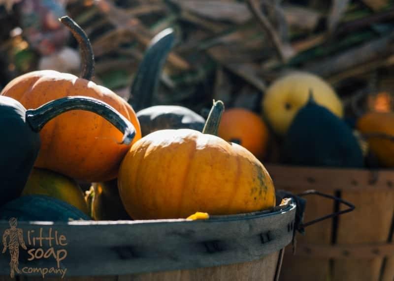 3 little uses for pumpkin_LittleSoapCompany.co.uk