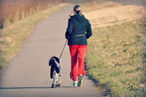 Three Easy Ways to Get Fit with Your Dog_LittleSoapCompany.co.uk