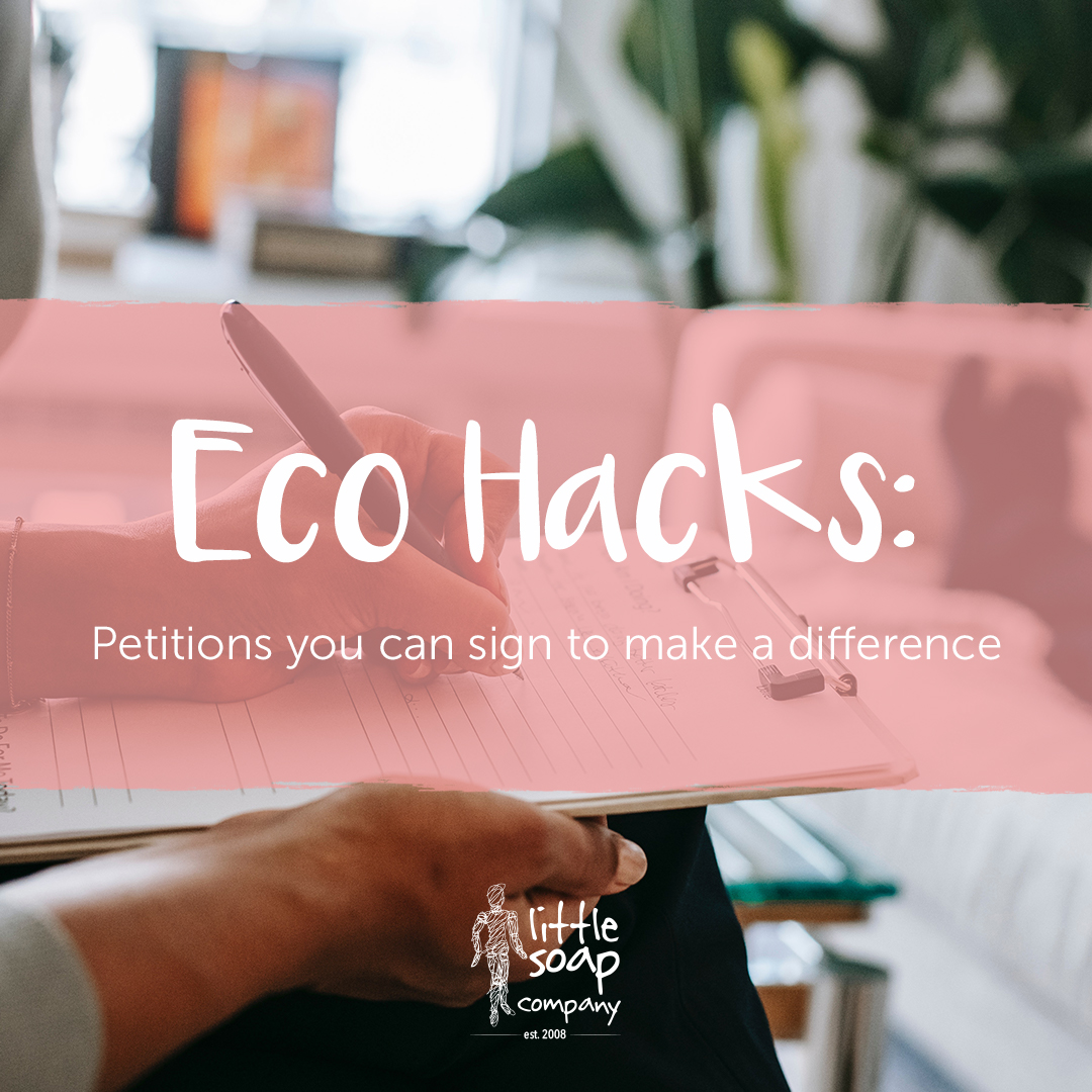 Eco Hacks #5: Signing Petitions