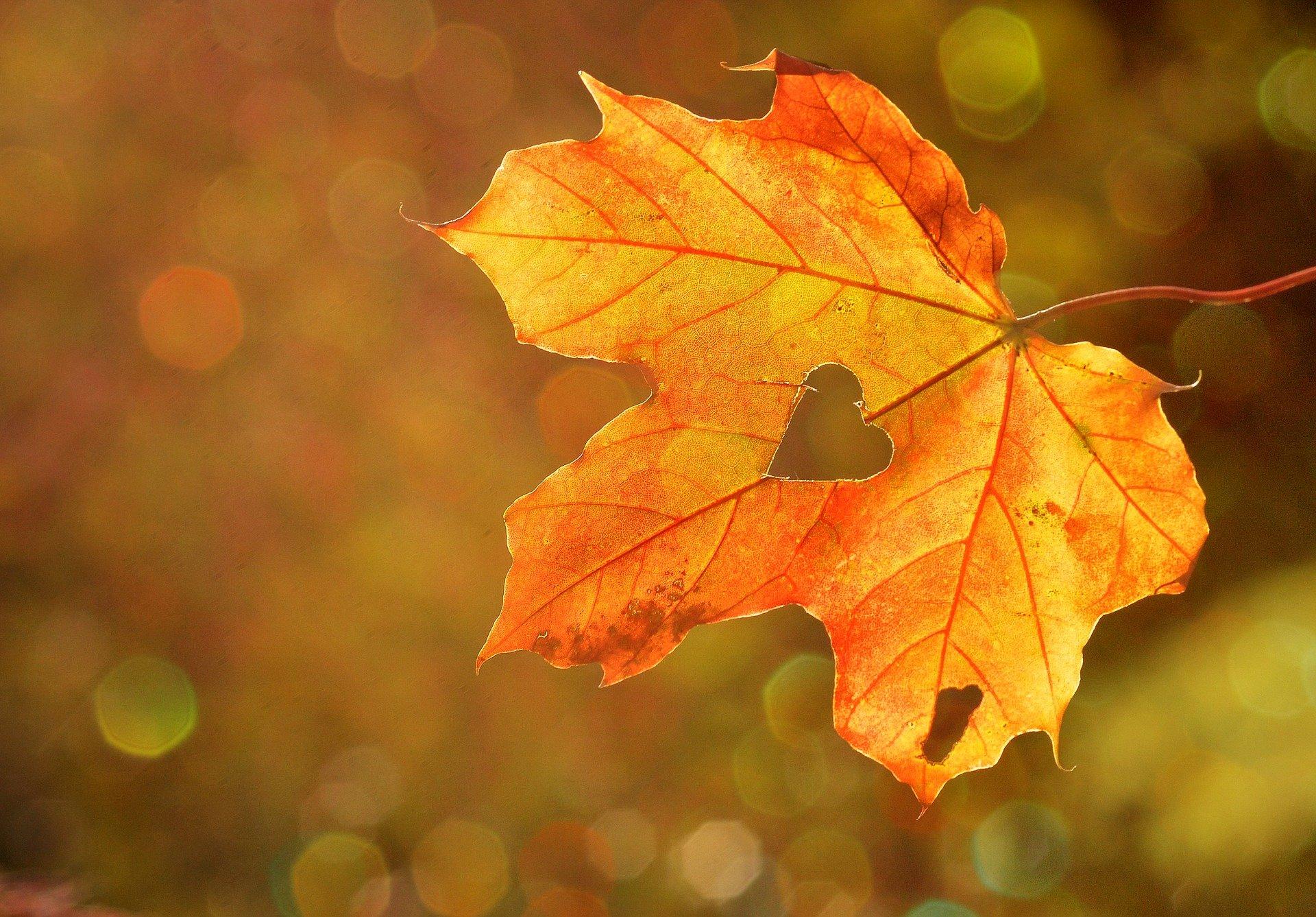 Three Little Skincare Tips for Autumn